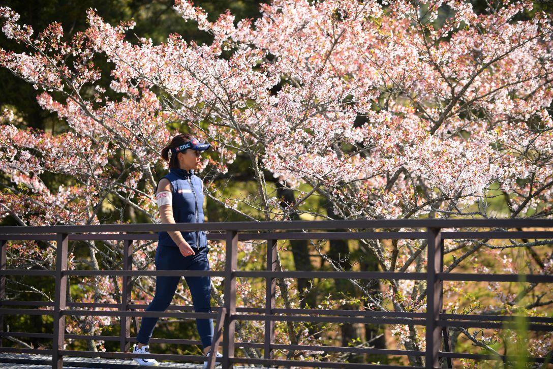 スタジオアリス女子オープン 最終日 テレサ・ルー <Photo:Atsushi Tomura/Getty Images>
